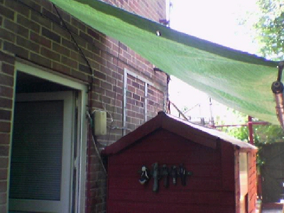 The Awning